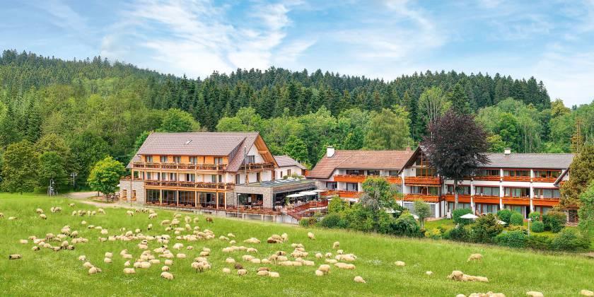 Sterne Hotel Freudenstadt
